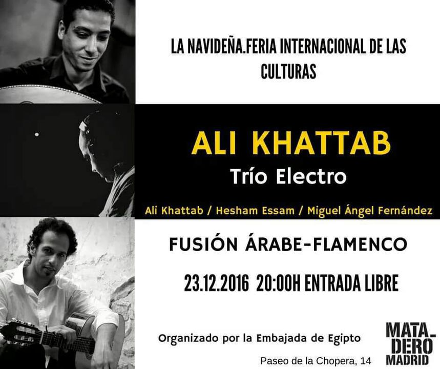 Concert by Ali Khattab in Madrid